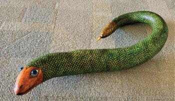 Snake by Steve House