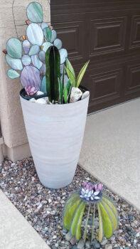 Cynthia's Cacti