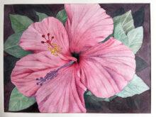 Karen Kulling's flower