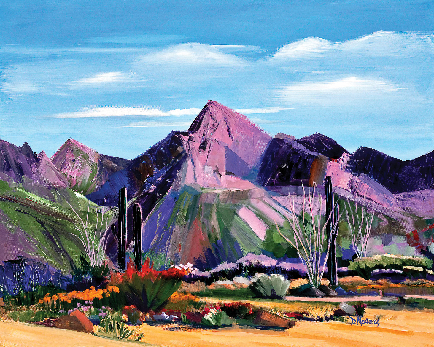 Pink Ocotillo at Pusch Ridge
